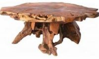 cut-tree-trunk-coffee-table